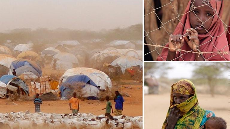 Dadaab Kenya