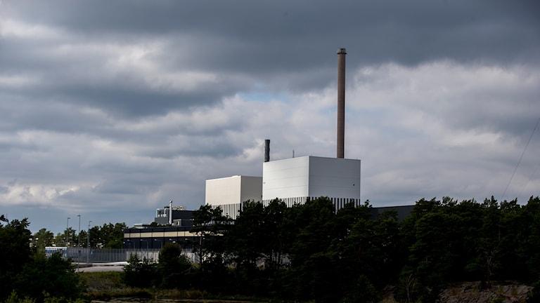 Kärnkraftverk bakom en träddunge.