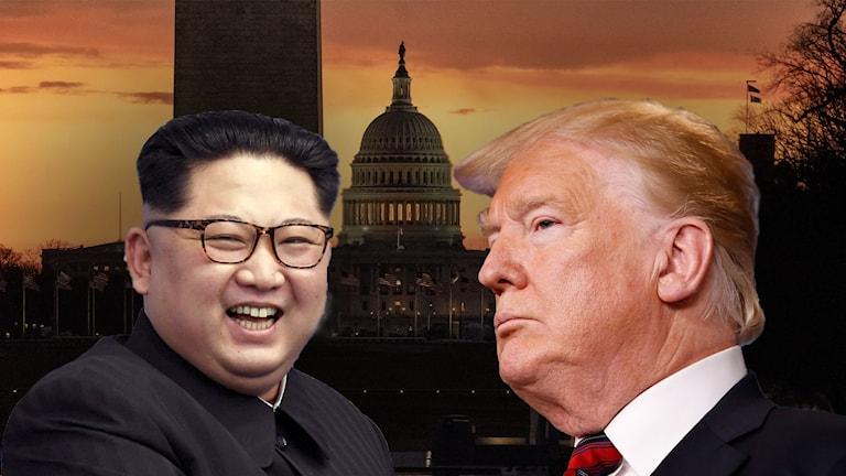 Trump och Kim träffas i februari