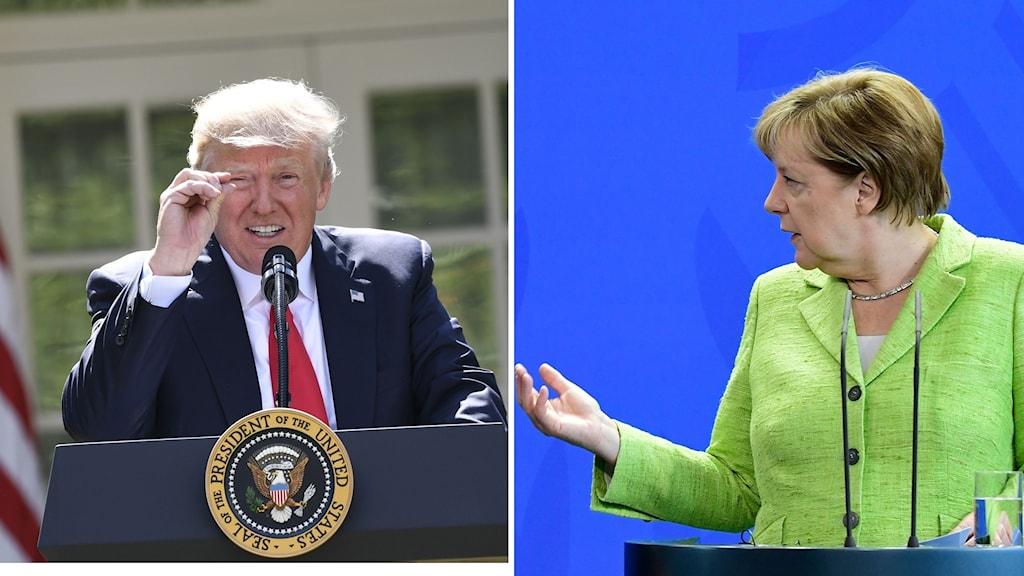USA:s president Donald Trump, Tysklands förbundskansler Angela Merkel. Foto: Tobias Schulz/Samuel Saul Loeb/TT. Montage: Sveriges Radio.