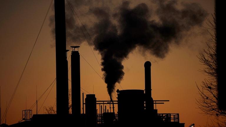 koldioxidutsläpp miljö klimat