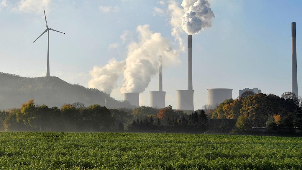 Vindkraftverk och kolkraftverk