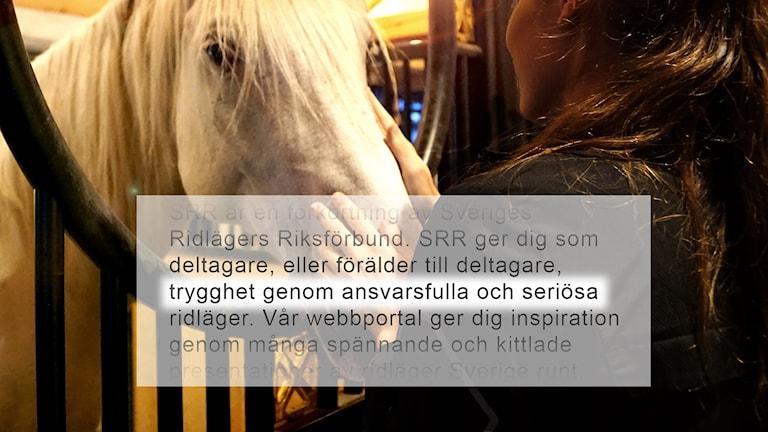 Text från hemsida. Häst och flicka i stall.