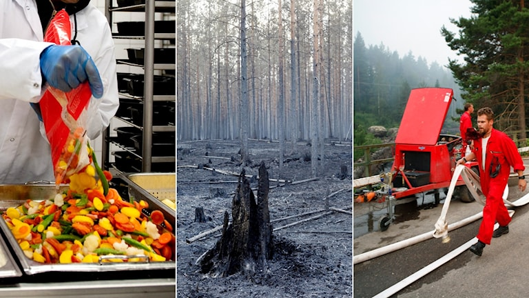 Tredelad bild: Mat som tillreds i storkök, ett eldhärjat träd och en brandman som går med en slang.