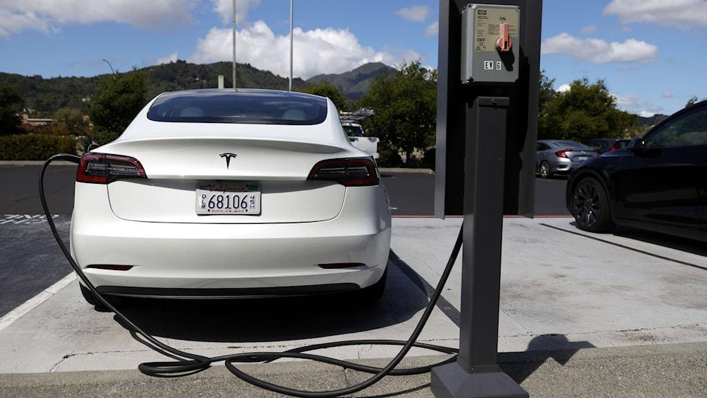 en Tesla som laddas i en elstolpe.