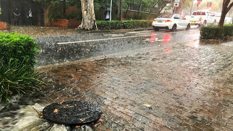 Hårt regn mot en gata.