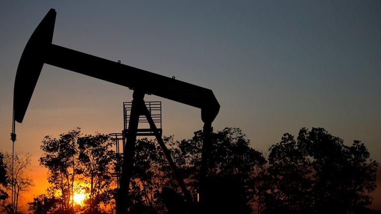 En oljekälla utanför staden El Tigre.