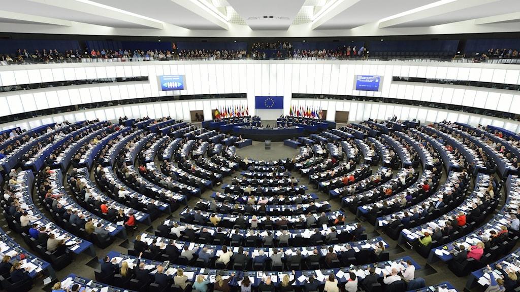 Europaparlamentet fylls på av nya parlamentariker