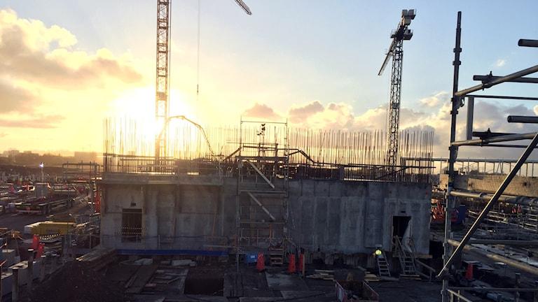 Bygget visar den påbörjade så kallade målstationen på forskningsanläggningen ESS i Lund. Man ser en påbörjad byggnad i betong, med armeringsjärn som sticker ut. Byggkranar i bakgrunden. Foto: Anna Bubenko/Sveriges Radio.