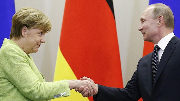 Angela Merkel och Vladimir Putin. Foto: Alexander Zemlianichenko/TT.