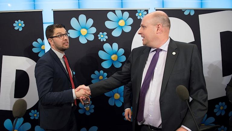 Sverigedemokraternas partiledare Jimmie Åkesson och Patrick Reslow