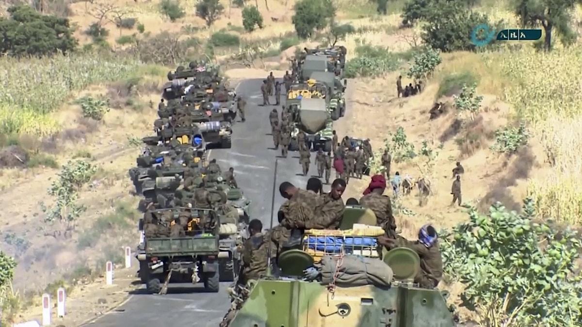 Etiopiska regeringsstyrkor samlade vid gränsen mot Tigray-regionen