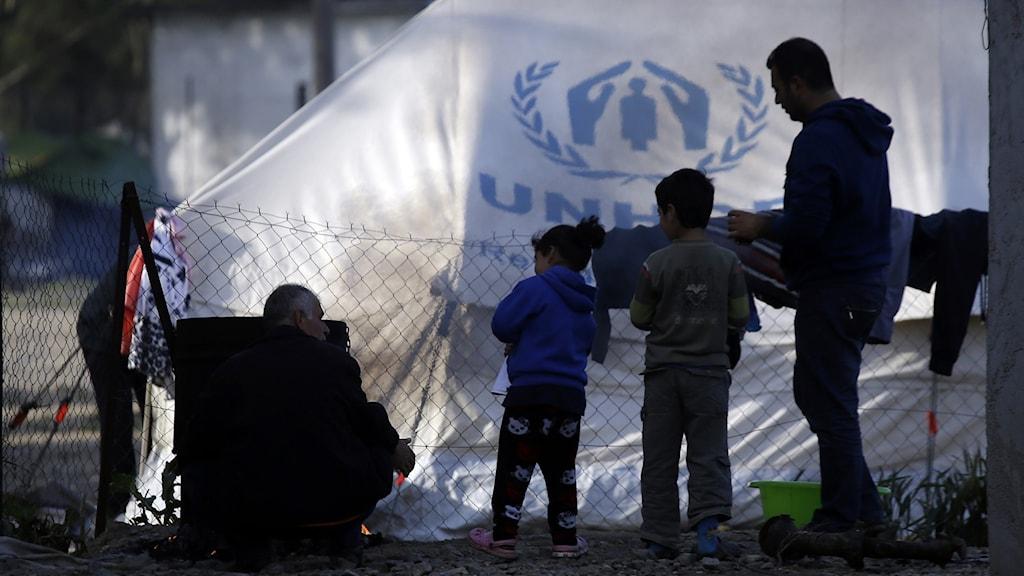 flyktingar vid gränsen mot Nordmakedonien