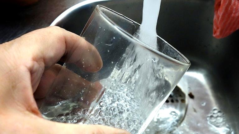 Närbild på glas som fylls med kranvatten.