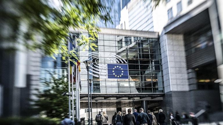 Oenighet om hur coronasmittan ska hanteras i Europa