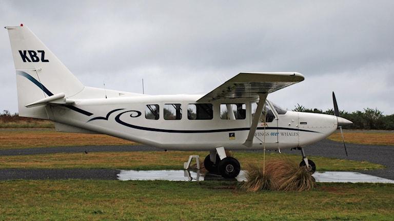 Ett litet flygplan av typen som störtade utanför Umeå.