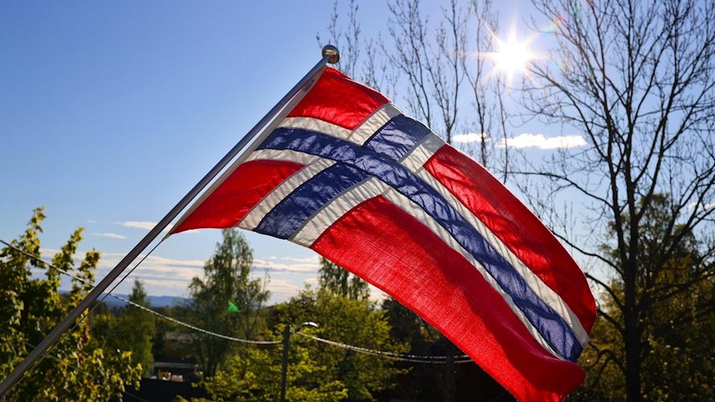 En norsk flagga