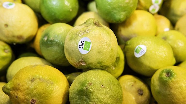 Ekologiska citroner