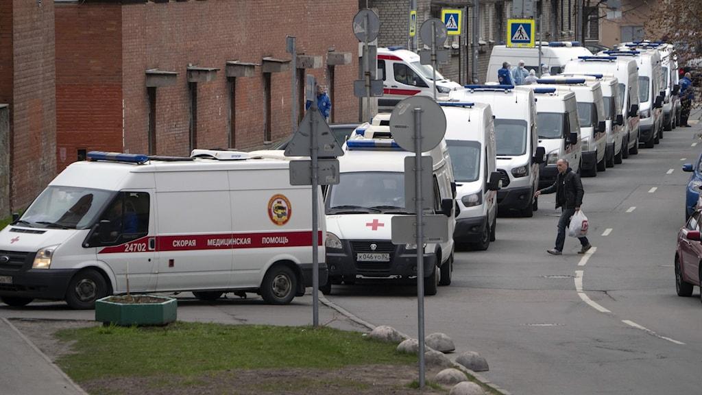 Lång kö av vita ambulanser längs kanten av en gata