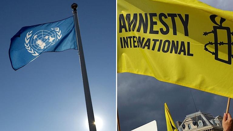 FN-flagga och Amnesty-flagga