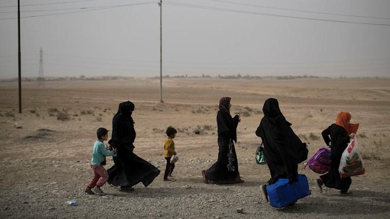 Människor som flytt från Mosul vid en vägspärr söder om staden.