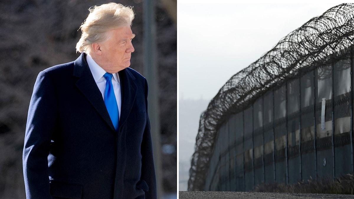 Donald Trump vill ha en mur