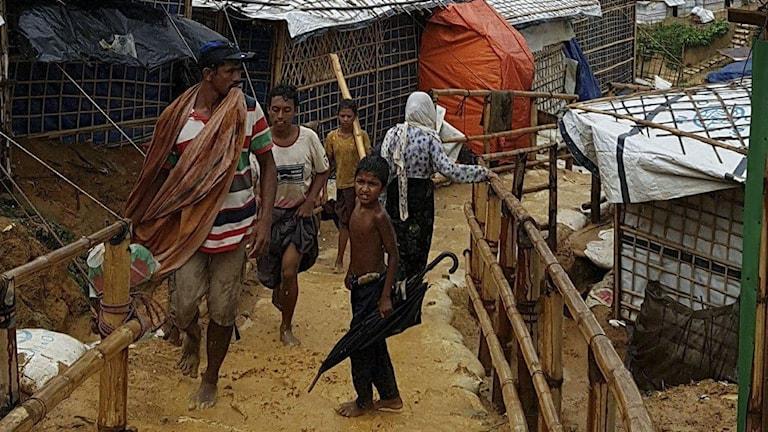 Rohingyer i flyktingläger i Bangladesh.