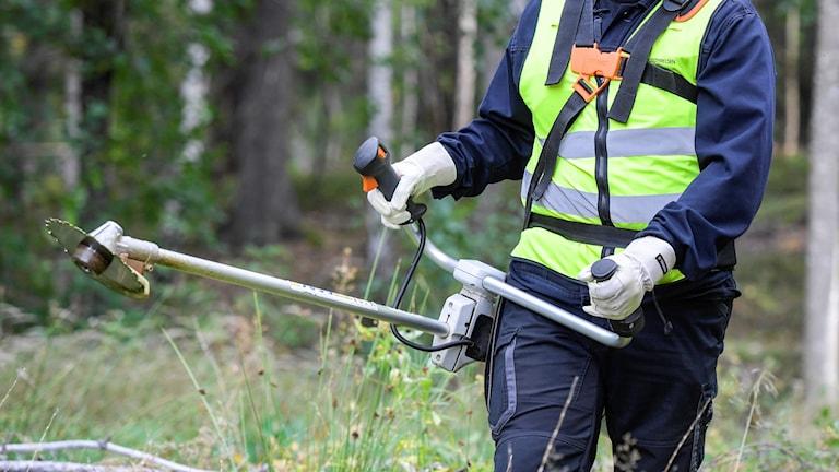 Man som arbetar i skogen
