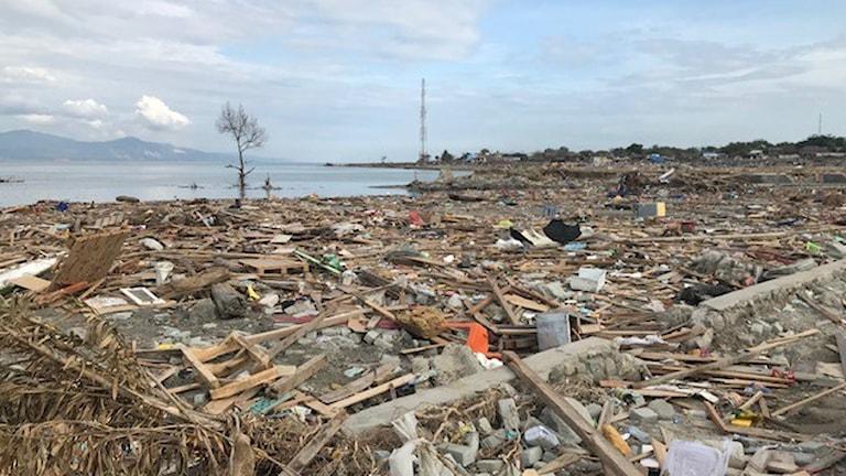 Inne i Palu har jordskalven fått hundratals byggnader att rasa samman.