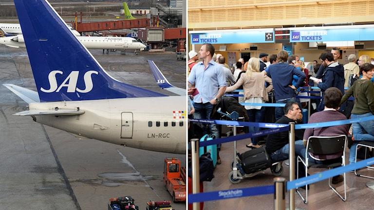 SAS riskerar att drabbas av en omfattande pilotstrejk. Foto: TT.