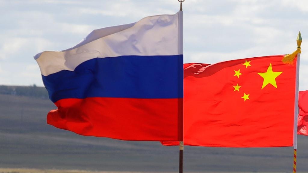 Flaggor Ryssland Kiona