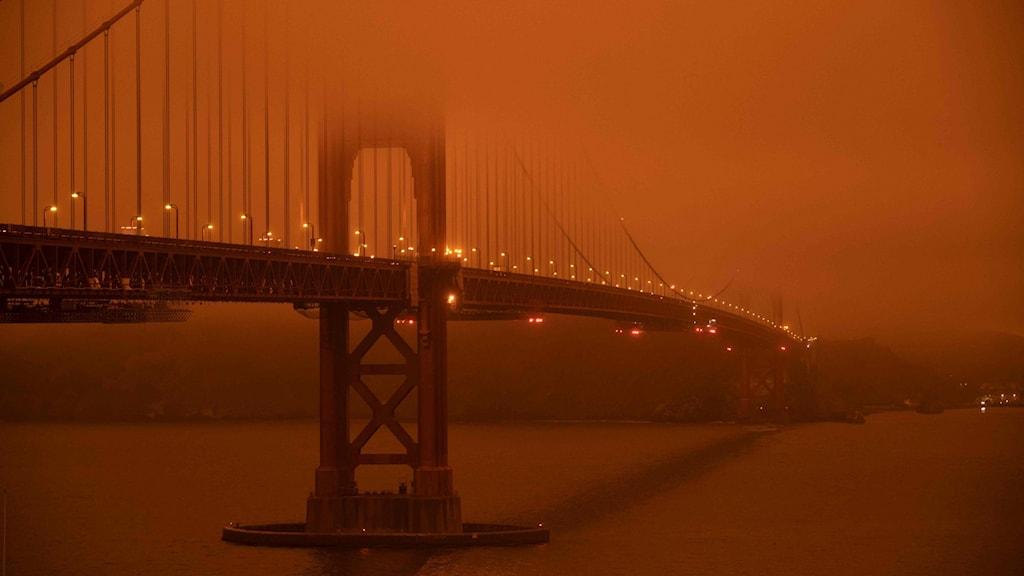 Bränderna i USA, Golden Gate-bron i San Fransisco.