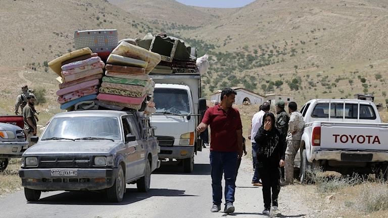 Arkivbild på syriska flyktingar som går på en väg.