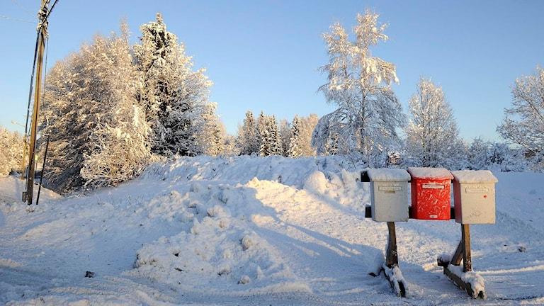 Postlådor i snö på landsbygd.