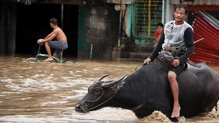 Fler döda efter oväder i Filippinerna