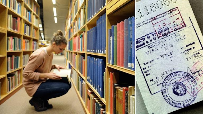 kvinna i biblioket och visum