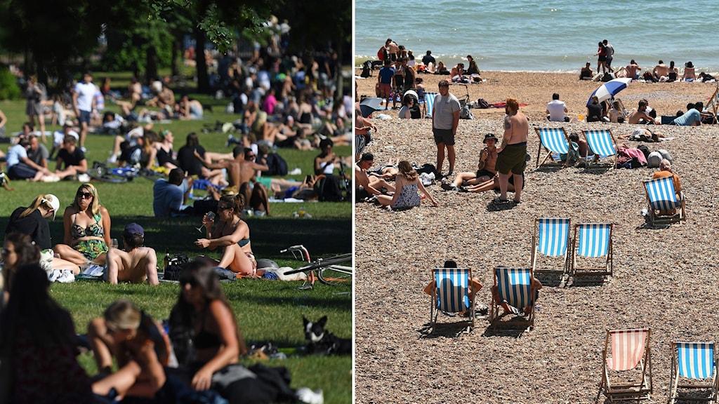Montage på människor som sitter i en park och människor som är på en strand, båda bilderna från England.