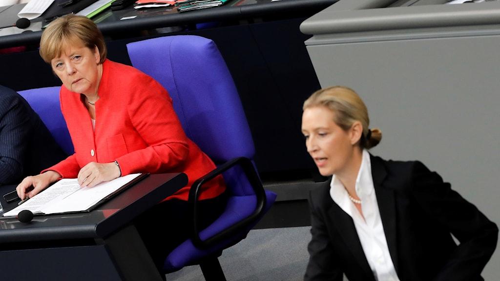 Angela Merkel och Alice Weidel i det tyska parlamentet.