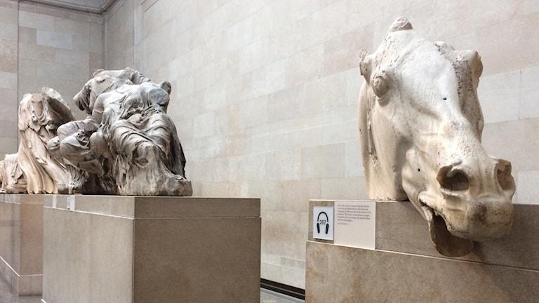 Parthenonskulpturerna på the British Museum