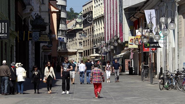 Ljubljana, huvudstad i Slovenien.