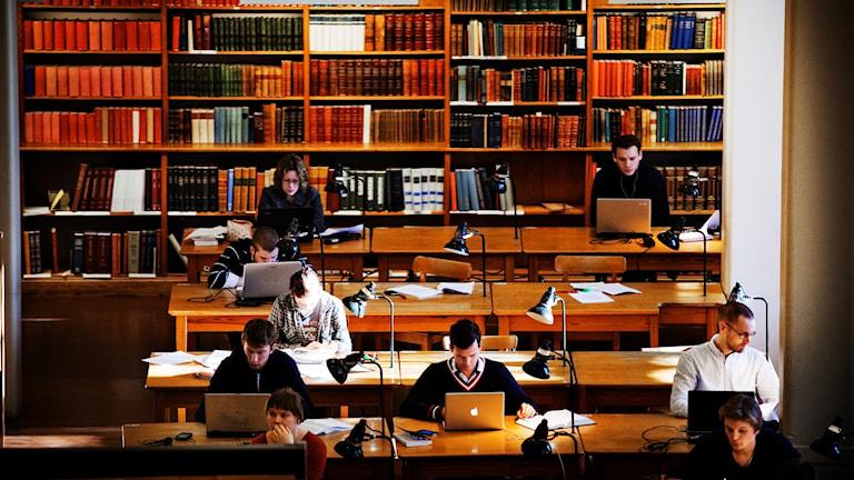 Rekordmånga anmälningar mot falska examensbevis