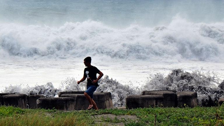 Tyfonen.