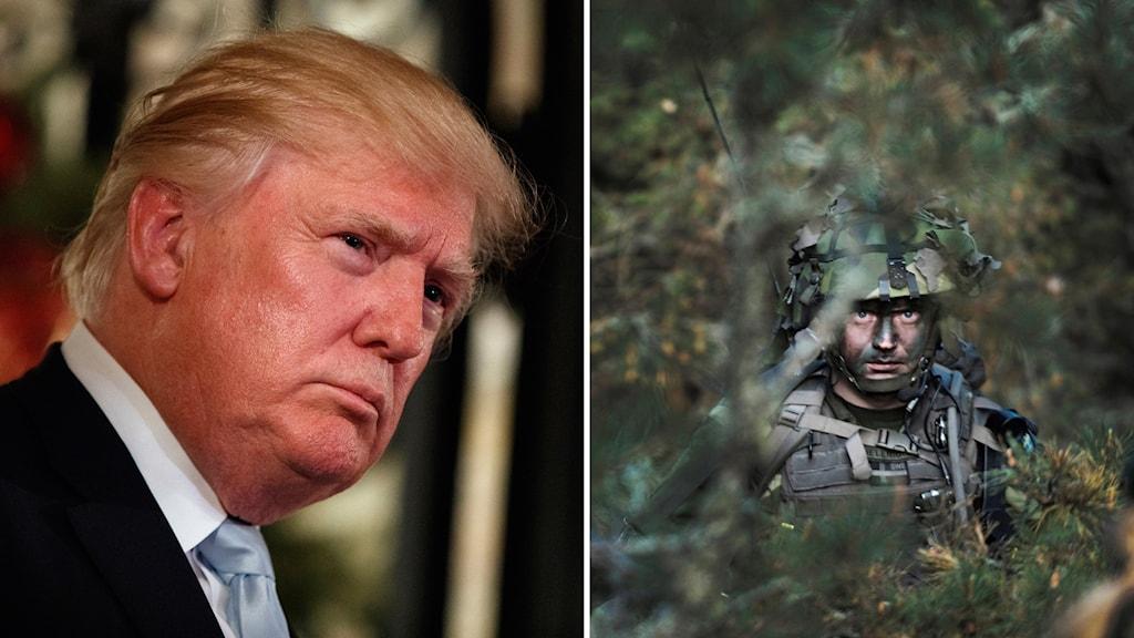 Delad bild: Donald Trump och kamouflerade militärer i skogen.