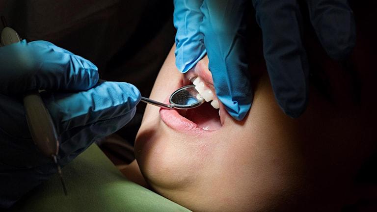 Tandläkare undersöker barn.