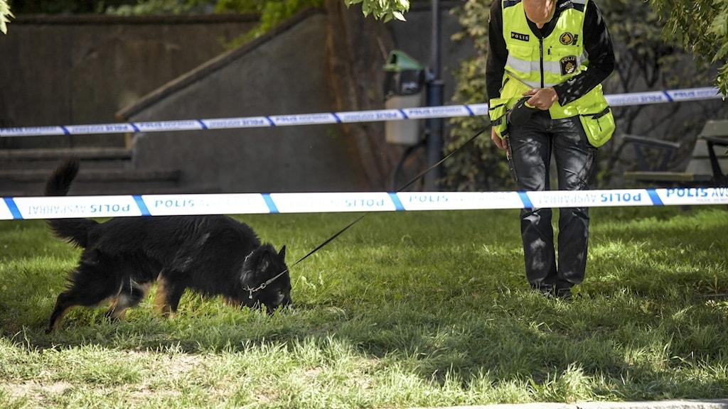 Hundförare på plats i närheten av brottsplatsen.