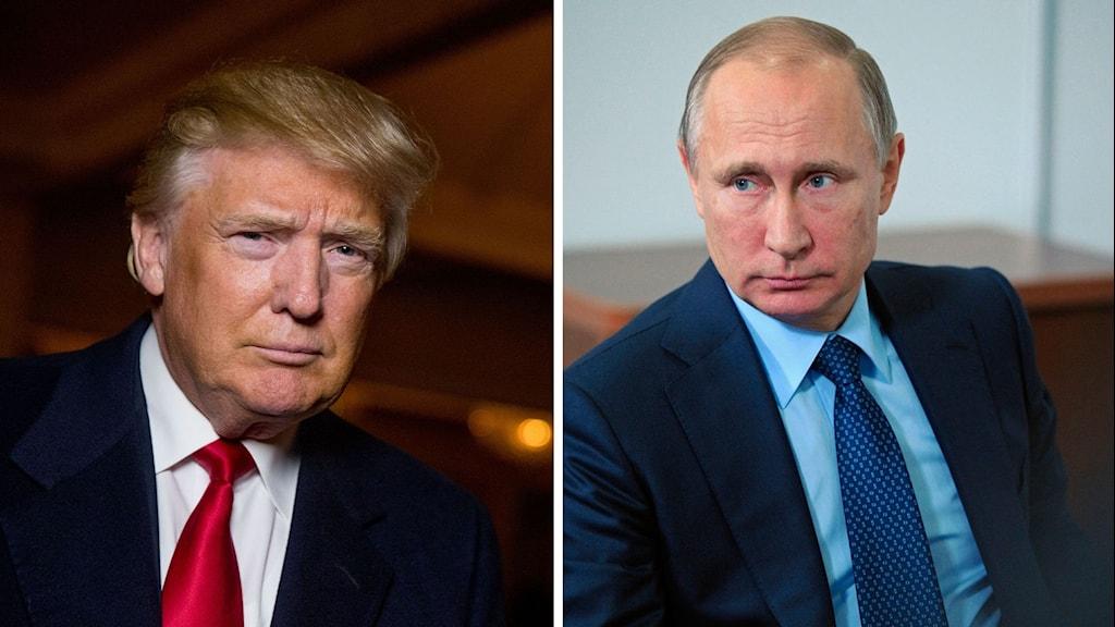 Donald Trump, Vladimir Putin. Foto: Andrew Harnic/Mikhail Klimemteyew/TT, Montage: Sveriges Radio.
