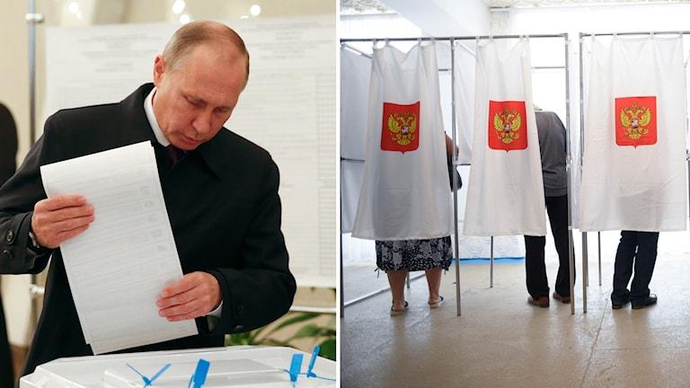 Delad bild: Först en på när Rysslands president röstar i parlamentsvalet, sedan en bild från en vallokal när folk röstar.