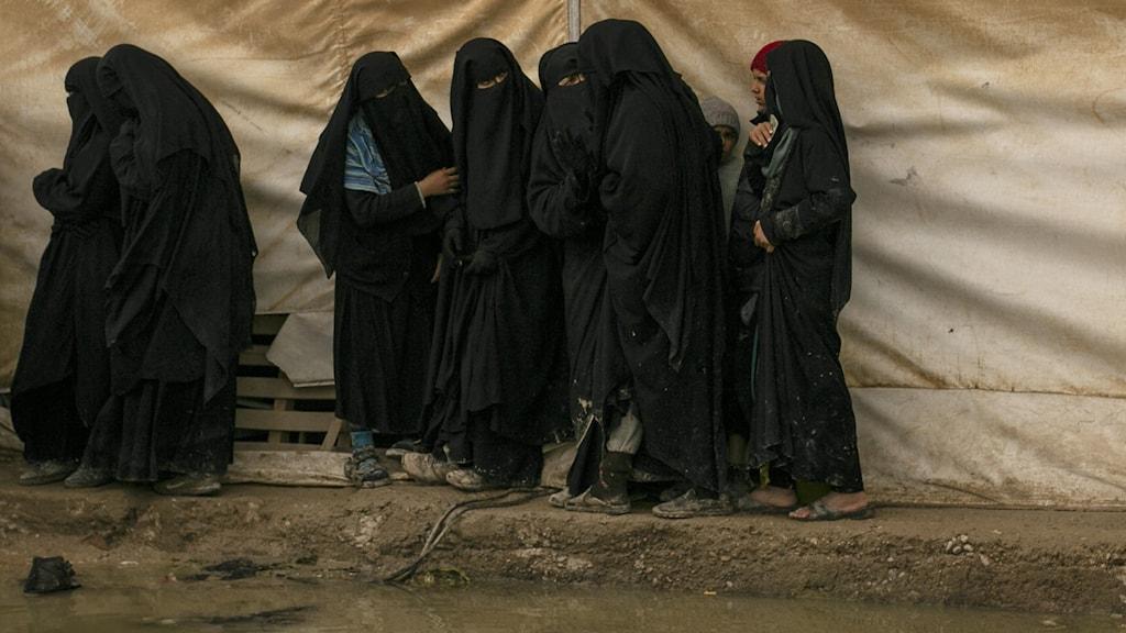 kvinnor i al-hol-lägret