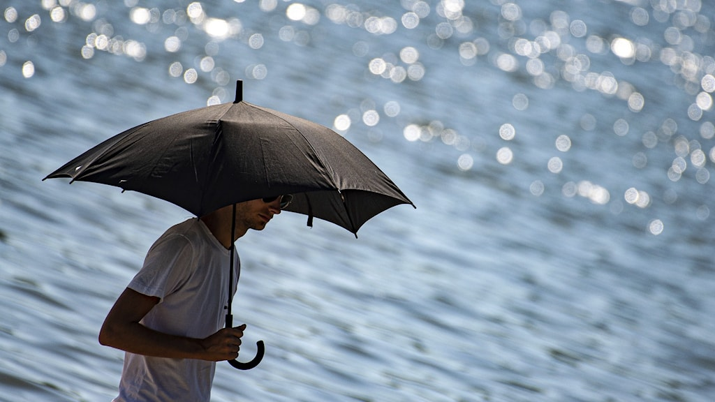 En man i Tyskland skyddar sig mot solen under ett paraply den 30 juni 2019.