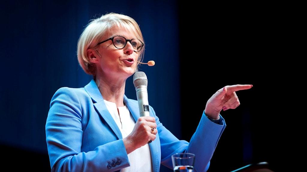 Moderaternas ekonomiska talespersonen Elisabet Svantesson .